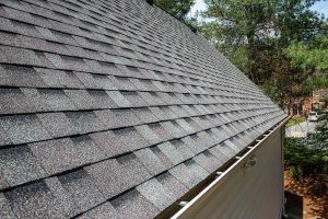 bowie md licensed roofing expert