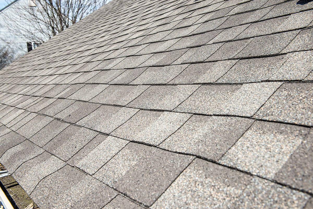 insurance roof company