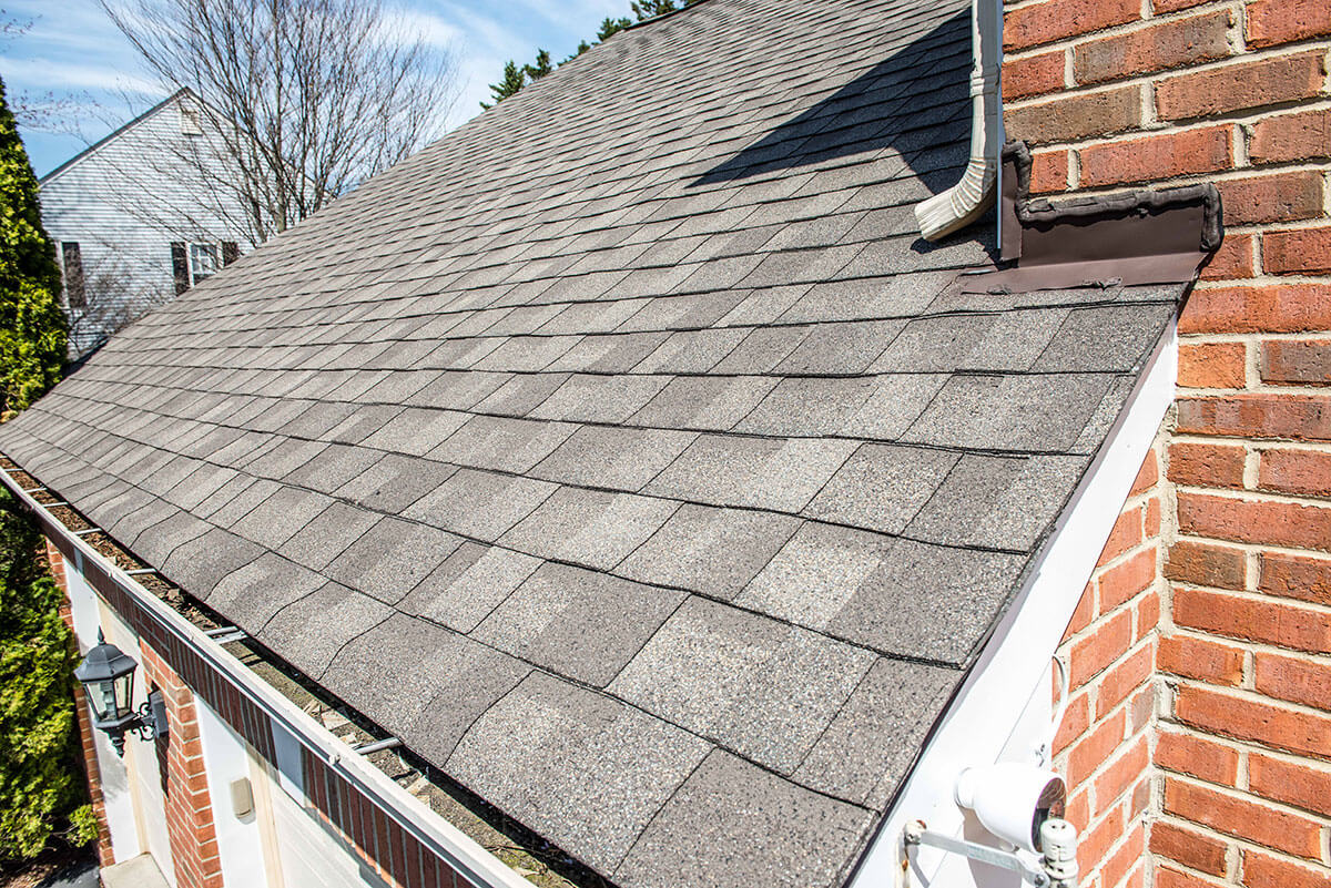 professional insurance roof